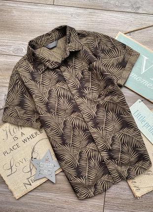 Рубашка с папоротниками primark 9-10л