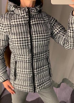 Стёганая демисезонная куртка с капюшоном курточка amisu есть р...