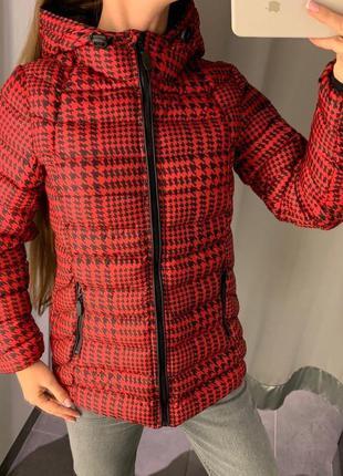 Стёганая красная демисезонная куртка курточка amisu есть размеры