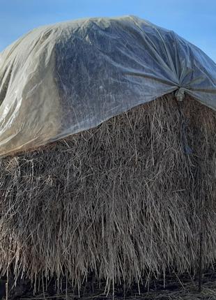 Продам сіно (трава садова) у відмінному стані