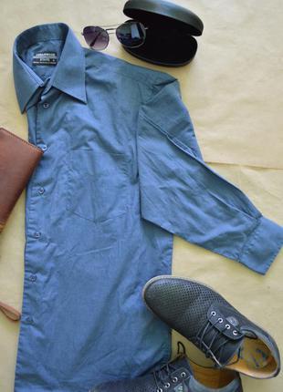 Мужская рубашка cedarwood