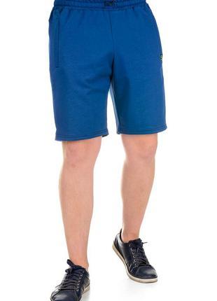 Мужские спортивные шорты синие