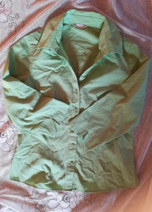 Нежно салатовая рубашка короткая
