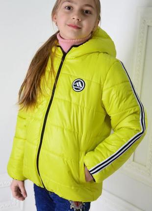 Куртка детская , на девочку, демисезонная