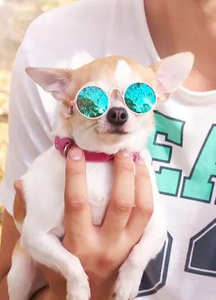 Очки для собак мелких пород солнцезащитные 2712-26