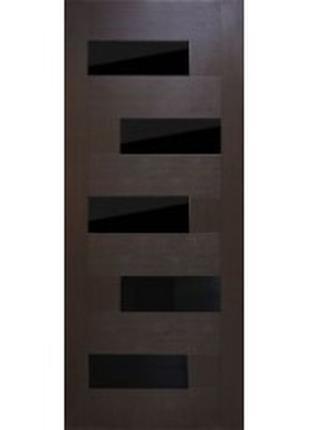 Двери Домино ПВХ с черным стеклом