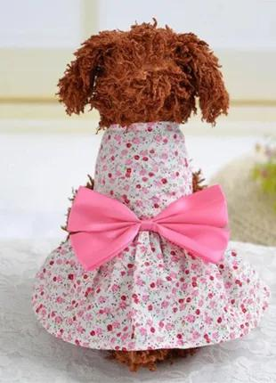 Платье для собак маленьких пород нарядное 3505-67