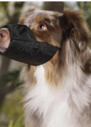 Намордник для собак мелких пород 3372-39-1