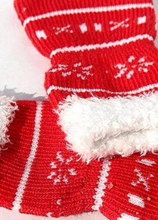 Праздничные носочки для собаки или кошки Новый год 3321-31