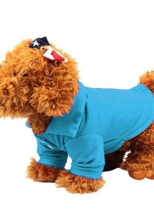 Реглан для собак мелких пород голубой 3312-63