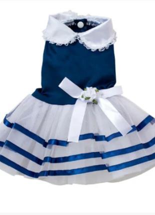 Платье для маленькой собаки нарядное 2527-67