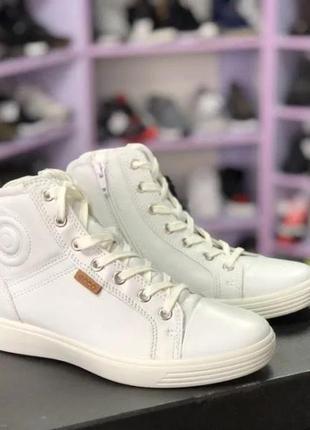 Ботинки, полуботинки, кеды ecco soft 7 teen. оригинал.