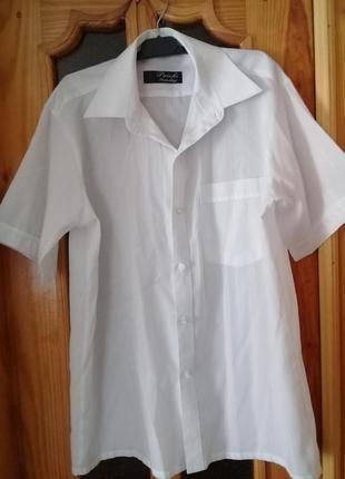 Мужская белая рубашка с коротким рукавом
