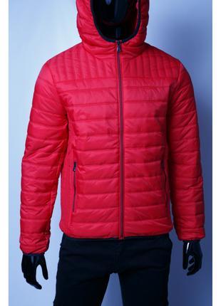 Куртка мужская демисезонная GS 1531_1 красная