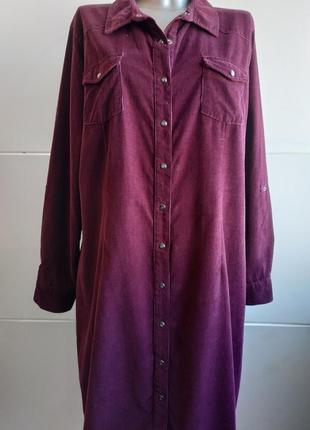 Стильное платье- рубашка m&co из вильвета фиолетового цвета