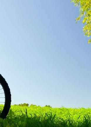Твій велокур'єр. Тернопіль. Доставка додому кур'єр .