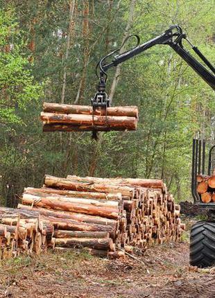 База даних всіх, хто займається деревом в Хмельницькій області