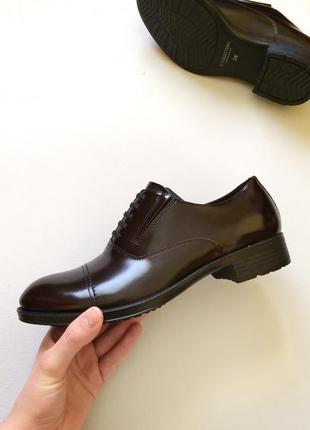 Кожаные дерби tj collection оригинал, туфли, оксфорды, броги, ...