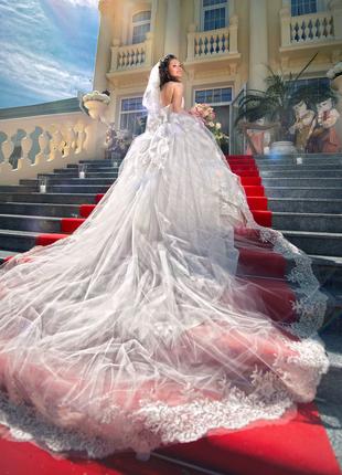 Фотограф в Николаеве, фотосессии, фотосъемка, свадебные фотосесси