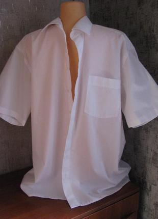 Мужская рубашка 52-54 р, белая, ворот 43 royal class германия