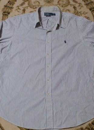 Рубашка мужская в полоску сорочка чоловіча у полоску polo ralp...