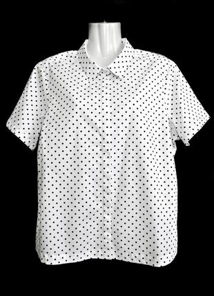 Белая рубашка в мелкий горошек на пуговицах р.18