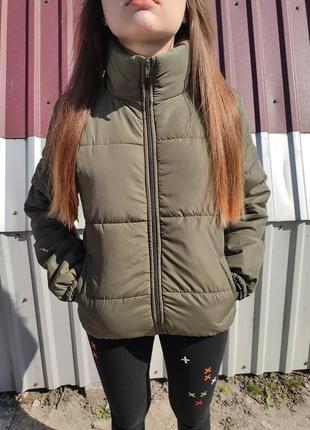 Куртка зефирка вессенняя