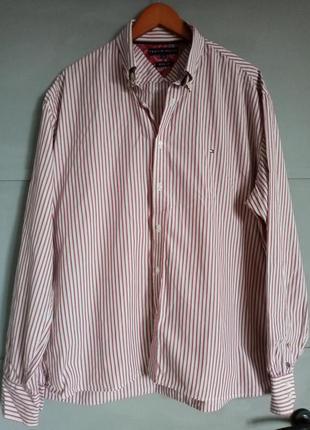 Брендовая рубашка. рубашка в полоску. качественная рубашка . х...