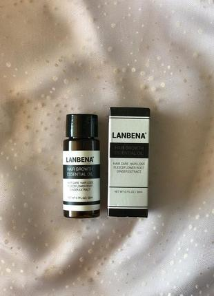 Сыворотка lanbena hair growth essential oil, против выпадения ...