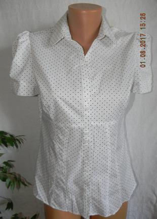 Новая блуза в горошек atmosphere