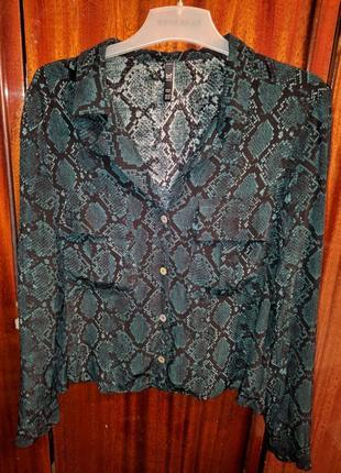 !продам новую женскую блузку zara со змеиным принтом