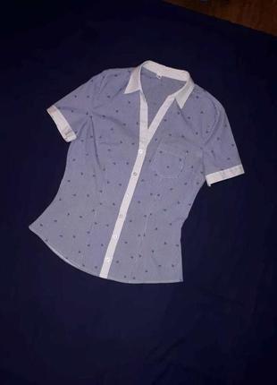 Рубашка блузка в полоску на коротком рукаве