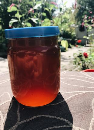 Мед натуральний в роздріб і опт із власної пасіки, мед гречаний