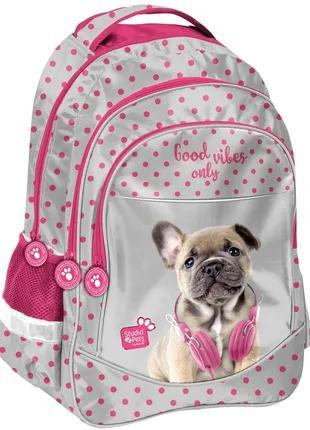 Школьный рюкзак для девочки Paso PES-181