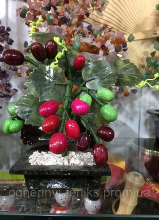Виноградная лоза, талисман фен-шуй