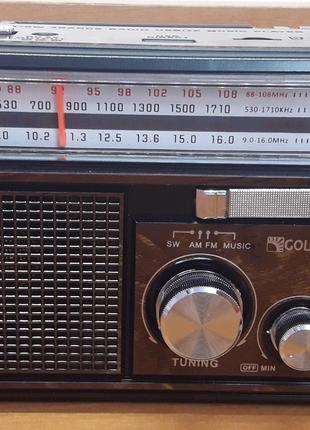 РадиоприёмникcUSB/SD съемным аккумулятором GOLON
