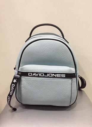 Голубая сумка david jones