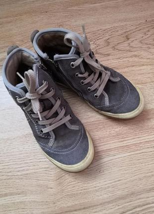 Брендовые кожанные кеды-ботинки richter, размер 30,стелька 20 см