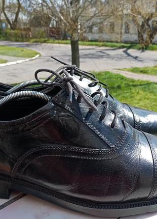 Стильные кожаные туфли clarks 43 разм