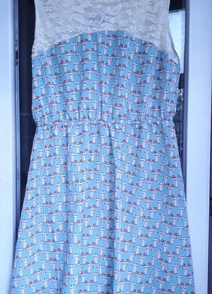 Голубое шифоновое платье max c london в принт котики кружево г...