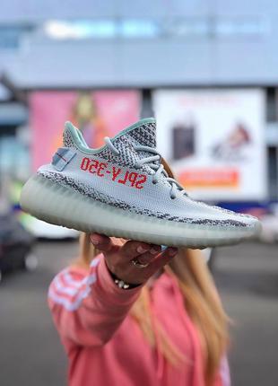 Adidas yeezy boost 350 sply