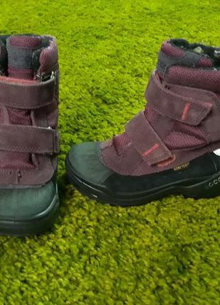 Зимние ботинки ecco, р. 27-17 см