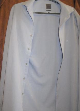 Рубашка мужская calvin klien голубая