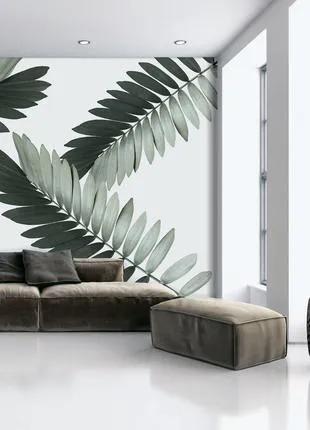 Фотообои в спальню листья пальмы Замия Palm Zamia 155 см х 250 см