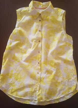 Лёгкая рубашка, блуза с воротником без рукавов