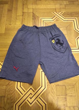 Мужские шорты трикотажные puma ferrari серые