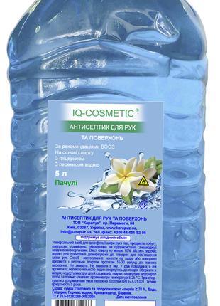 Антисептические дезинфицирующие средства IQ-cosmetic