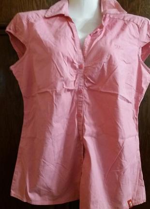 Блуза котон-бренд--esprit--м-л      №119      распродажа