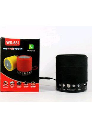 Портативная Bluetooth колонка WSTER WS-631 ФМ, MP3, USB