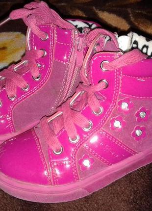 Ботинки деми clibee розовые на шнурках